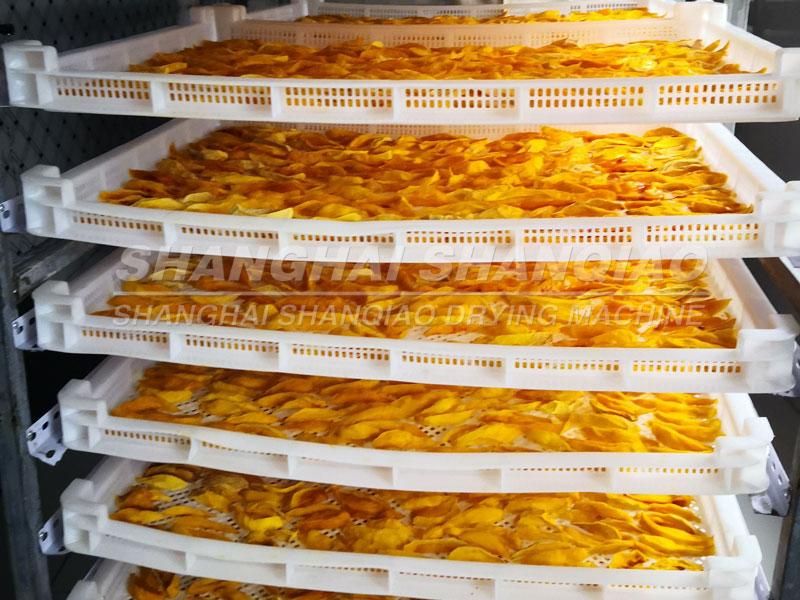 mango slice dryer project in Burkina Faso