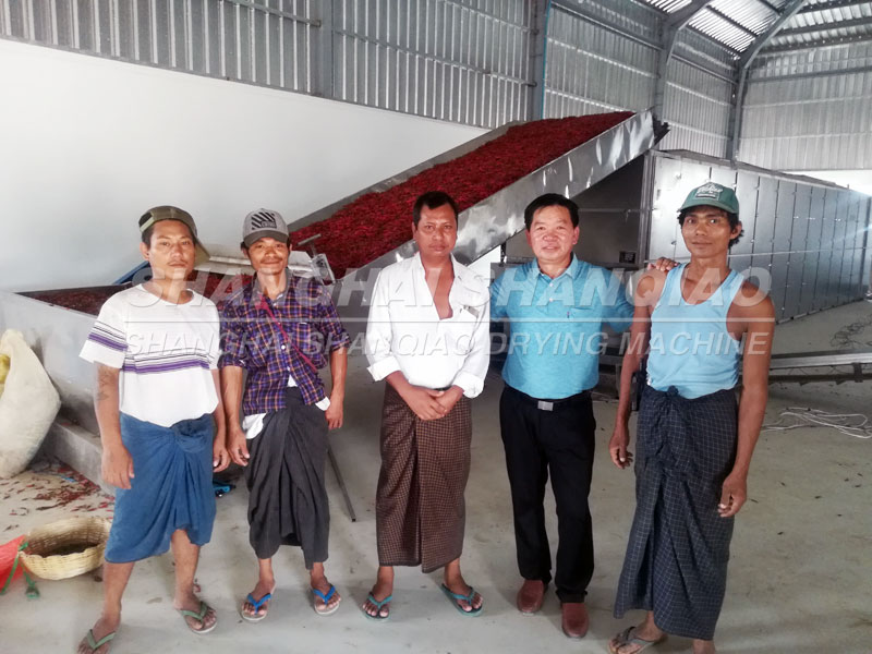Chili Pepper dryer project in Myanmar