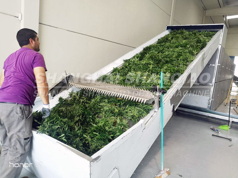 hemp drying machine site feedback from our customer