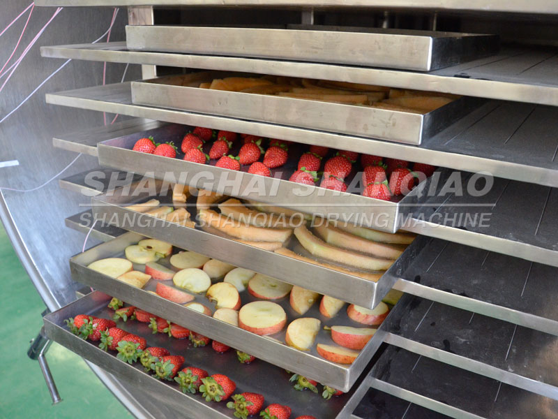 Vacuum frozen fruit dryer